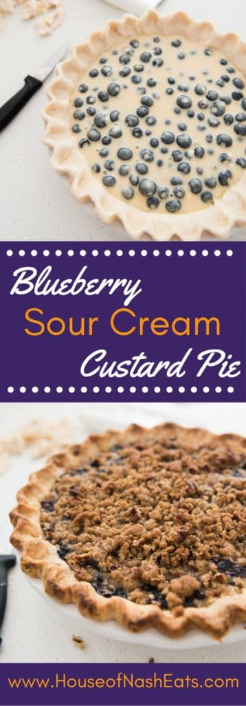 """Juicy fresh blueberries, creamy sour cream custard, buttery streusel crumble topping with chopped pecans - this blueberry sour cream custard pie won the """"Pie Most Likely To Bring About World Peace"""" award at our annual Pi Day party for good reason."""