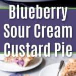 Blueberry Sour Cream Custard Pie