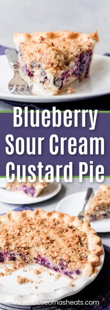 Blueberry Sour Cream Custard Pie
