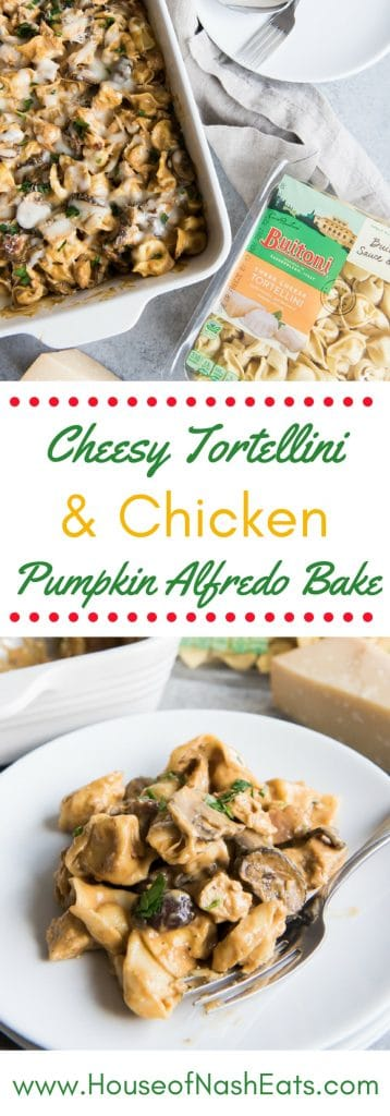 #ad This Cheesy Tortellini & Chicken Pumpkin Alfredo Bake features Buitoni® Three Cheese Tortellini with pan-seared chicken breast, tossed with a cheesy, creamy pumpkin alfredo sauce, as well as fresh mushrooms and crumbled bacon! It's a family-pleasing weeknight meal that is savory and satisfying! #sponsored @GoodNes @BuitoniUSA
