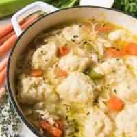 Chicken Noodle & Dumpling Soup