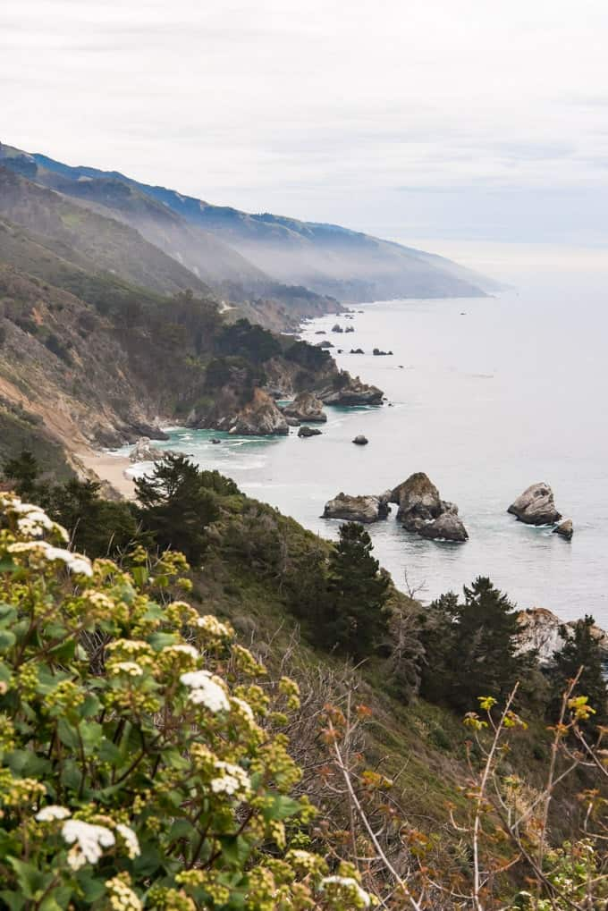 An image of the California coastline at big sur with wildflowers in the foreground.