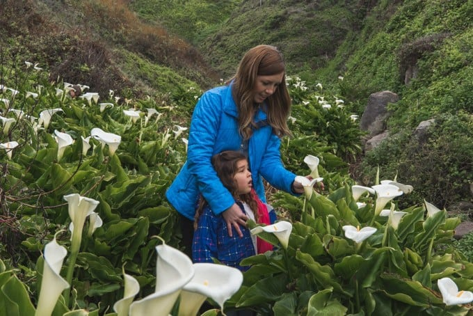 An image of a mother and daughter looking at wild calla lilies in Big Sur.