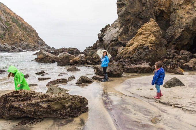 Exploring Pfeiffer Beach on a rainy day in Big Sur.