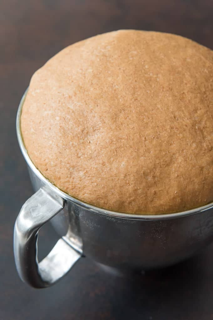 Fully risen bread dough for sweet molasses brown bread.