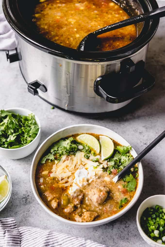 An image of a bowl of pork chili verde made in a slow cooker.