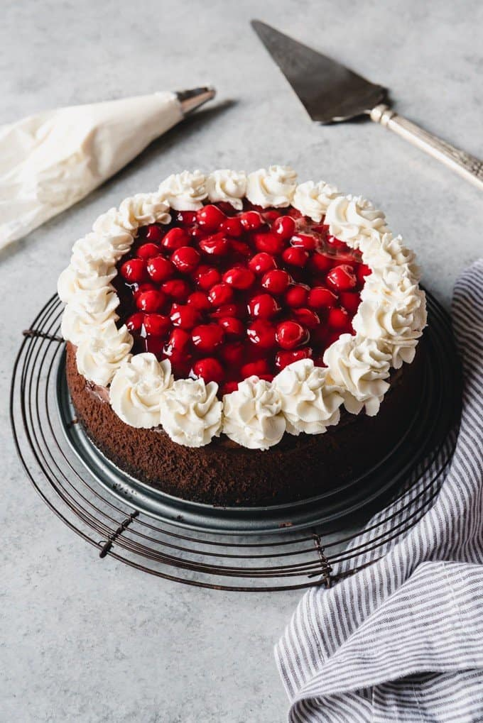 An image of a black forest cheesecake with chocolate cheesecake, cherry pie filling, and sweetened whipped cream on top.