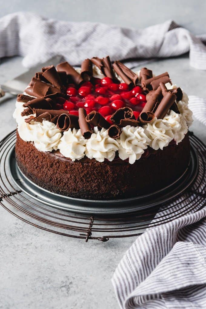 black forest cheesecake with cherry topping whipped cream border and chocolate curls on top