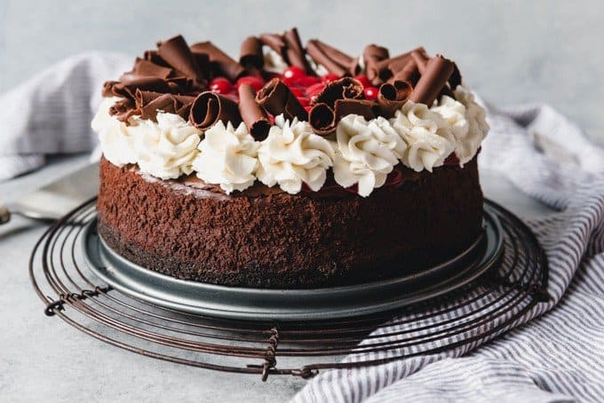 An image of a black forest cheesecake with cherries, whipped cream, chocolate cheesecake, and chocolate curls.