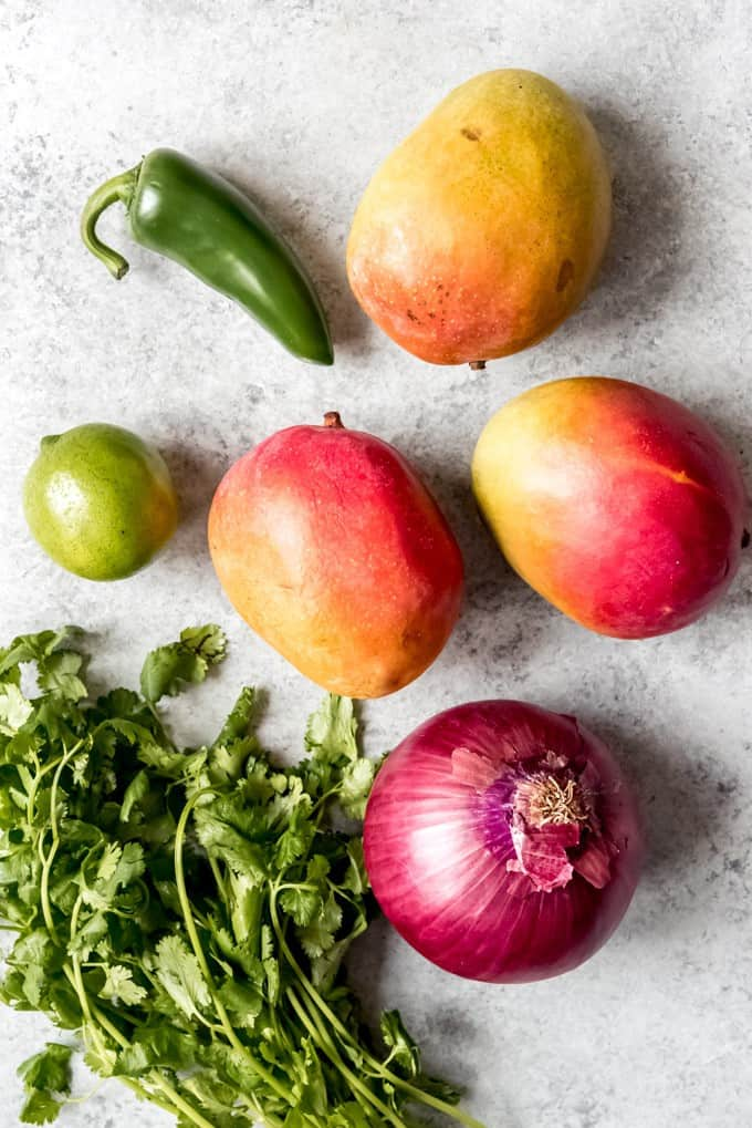 An image of mangoes, red onion, lime, cilantro, and jalapeno.