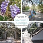 Best Things To See, Eat, and Do in Savannah, Georgia