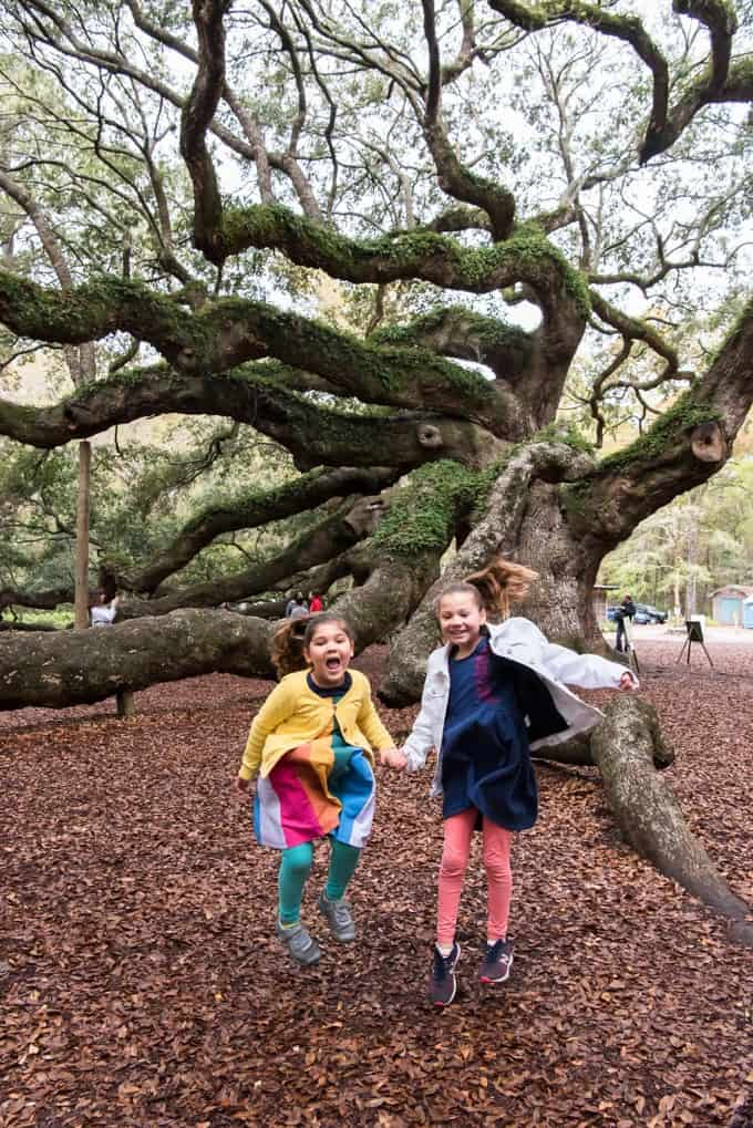 An image of two girls jumping in the air in front of the Angel Oak tree on Johns Island in South Carolina.