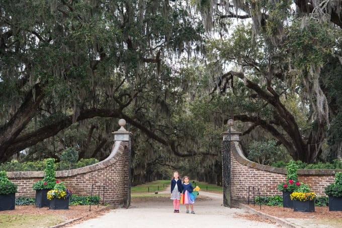 An image of the front entrance at Boone Hall Plantation.
