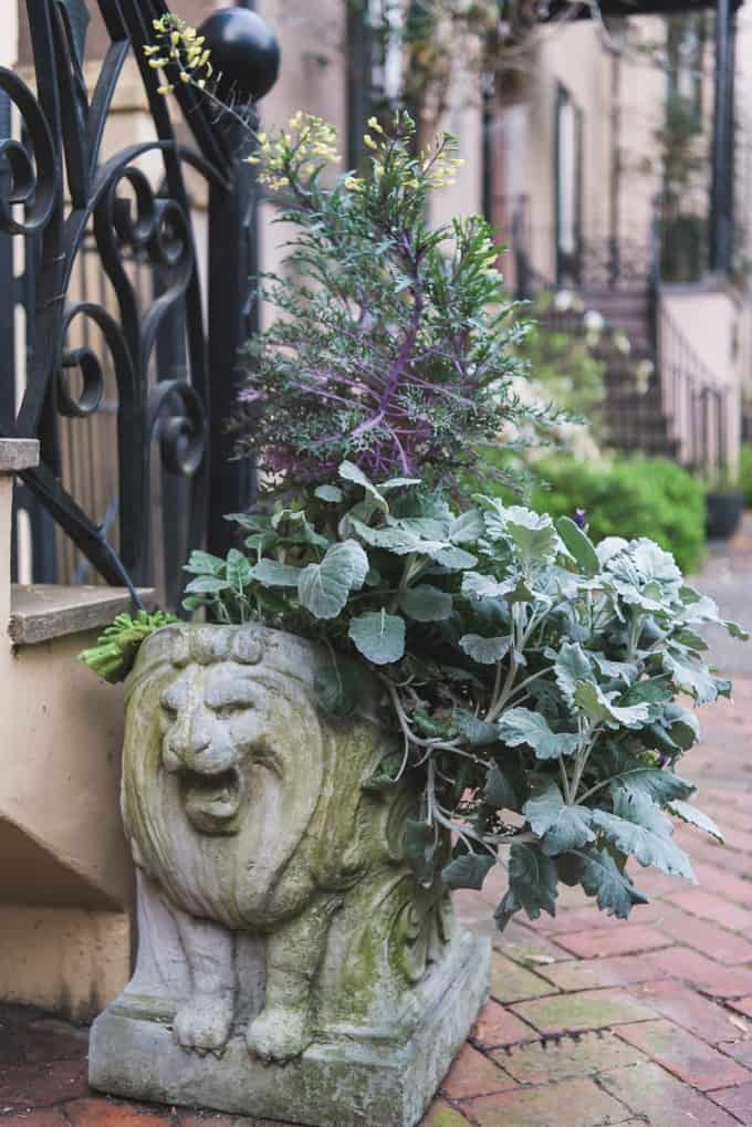 An image of a decorative planter box.