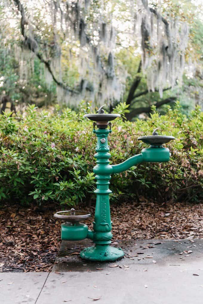 An image of a drinking fountain in Forsythe Park.