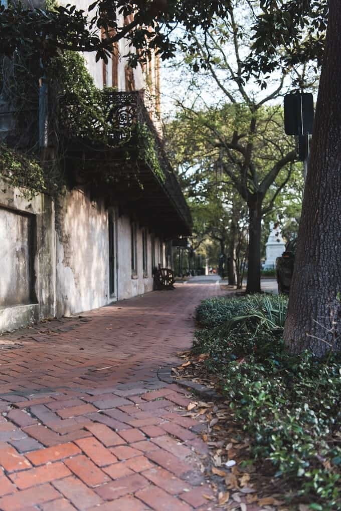 An image of brick-lined sidewalks in Savannah, Georgia.