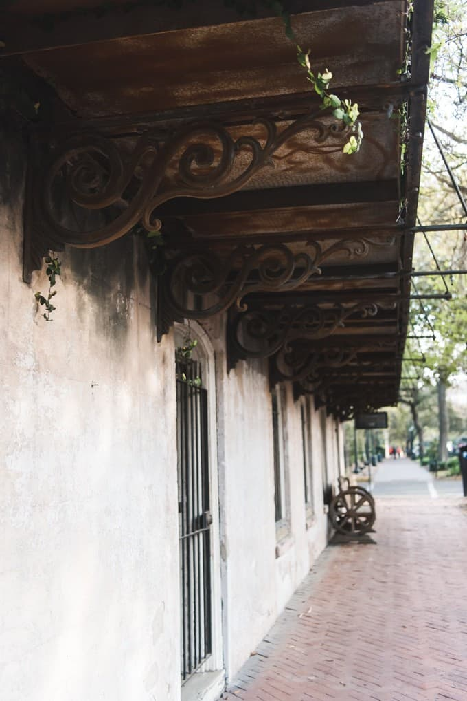 An image of a sidewalk in Savannah, Georgia.