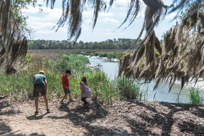 An image of children hunting for crabs along the salt marsh at Wormsloe Historic Site.