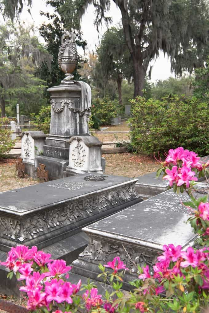 An image of azalea blossoms and gravestones in Bonaventure Cemetery.