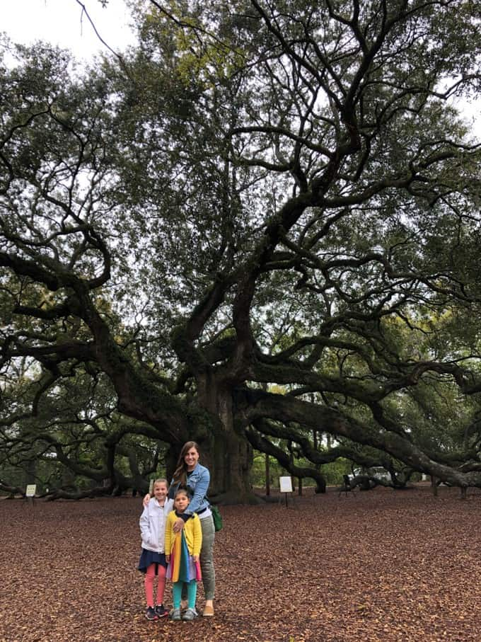 An image of a mom and her daughters in front of the Angel Oak Tree on Johns Island in South Carolina.