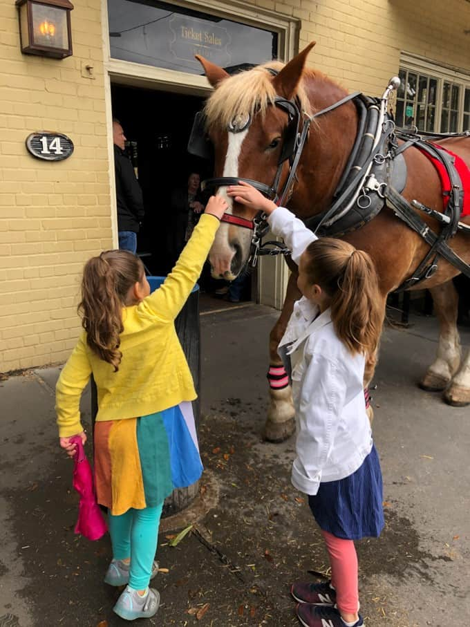 An image of girls petting a horse.