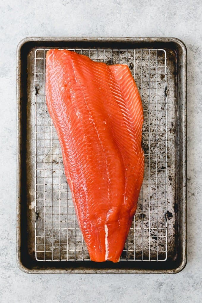 An image of brined salmon that is drying out to form a pellicle on top before being smoked.