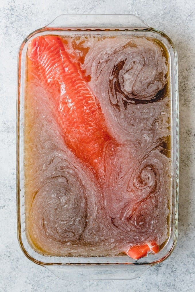An image of a large piece of salmon in a brine made from water, salt, and brown sugar.