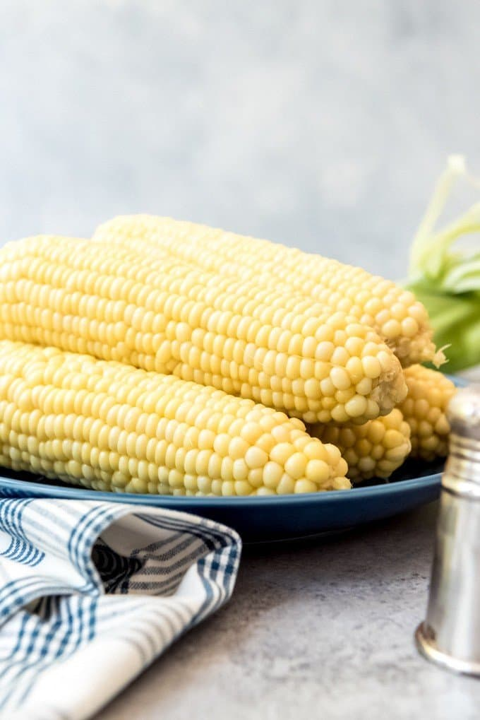 An image of boiled corn on the cob on a plate.