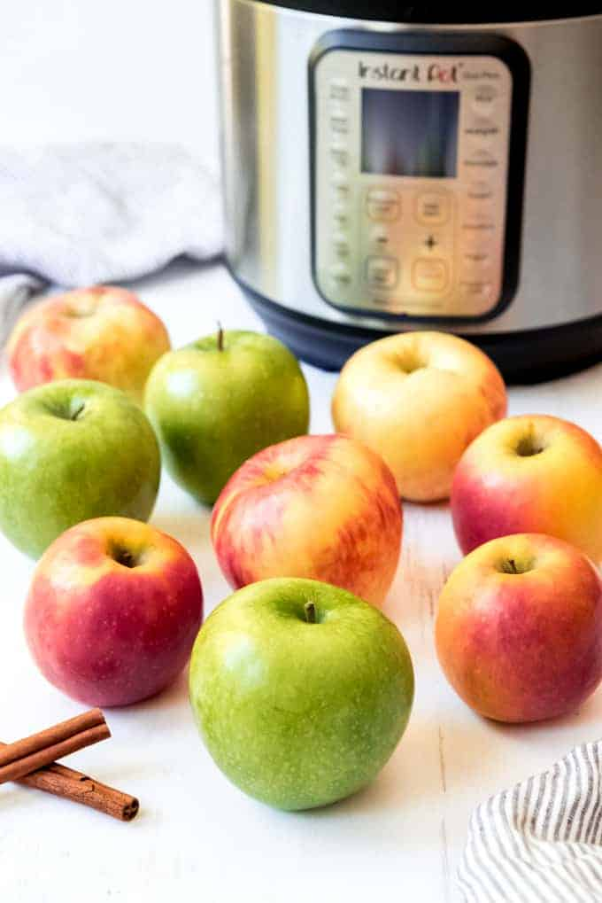 An image of a variety of the best apples to be used for making applesauce.