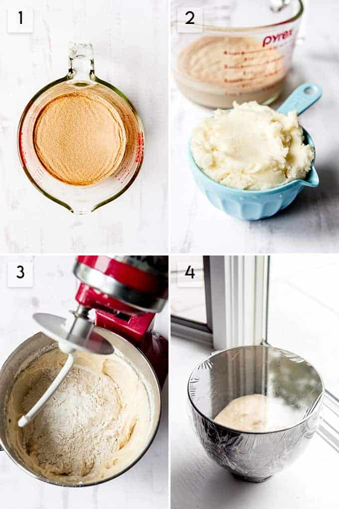 A collage of images showing how to make homemade potato rolls.