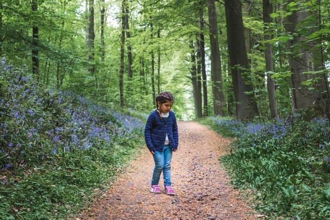 An image of a child walking along a trail through the Blue Forest in Belgium.