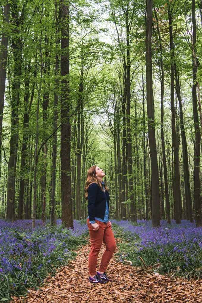 An image of a woman looking up at the trees in the Hallerbos.