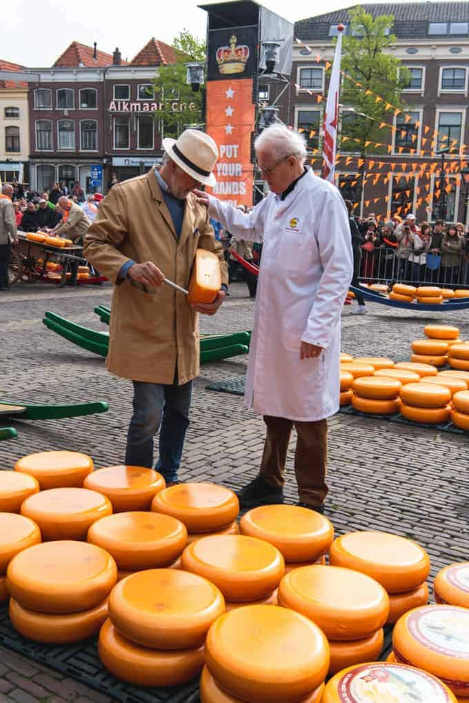 An image of the Cheese Father inspecting cheese at the Alkmaar Cheese Market.