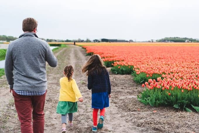 An image of a dad and kids exploring tulip fields in the Netherlands.