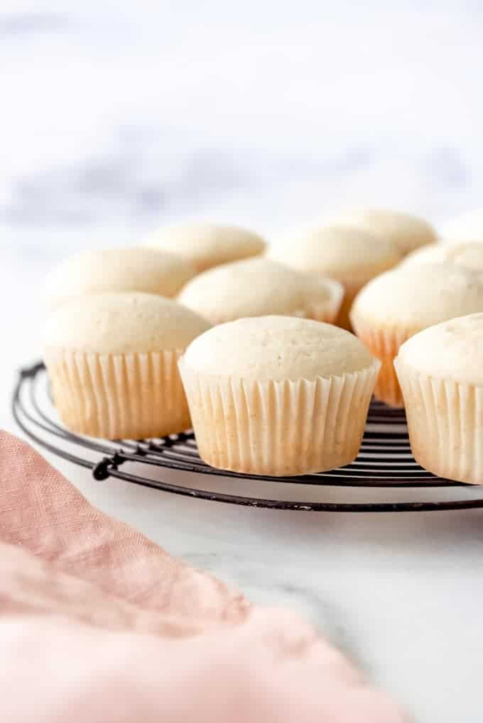 An image of plain vanilla cupcakes without frosting.