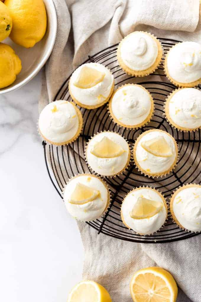 An image of fresh lemon cupucakes with lemon slices on top for decoration.