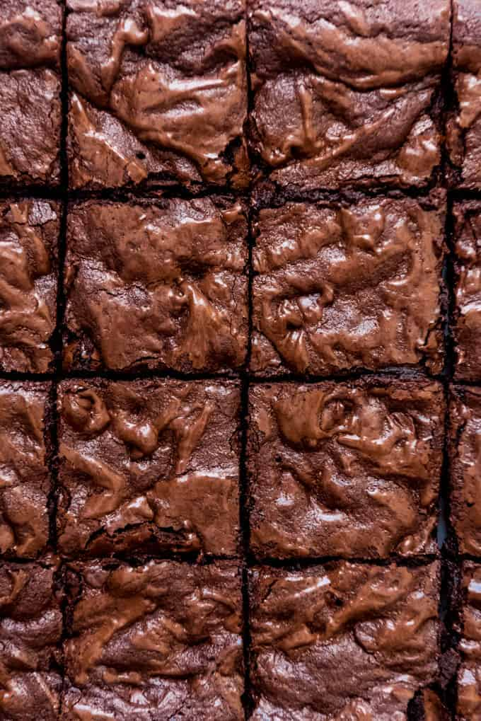 Homemade brownies cut into squares.