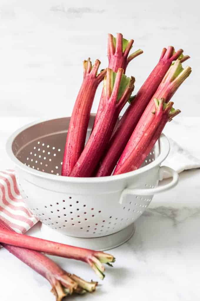 A white colander with rhubarb stalks in it.