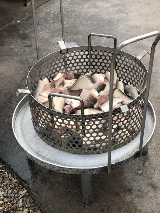 White fish being prepared for a fish boil in Door County, Wisconsin.