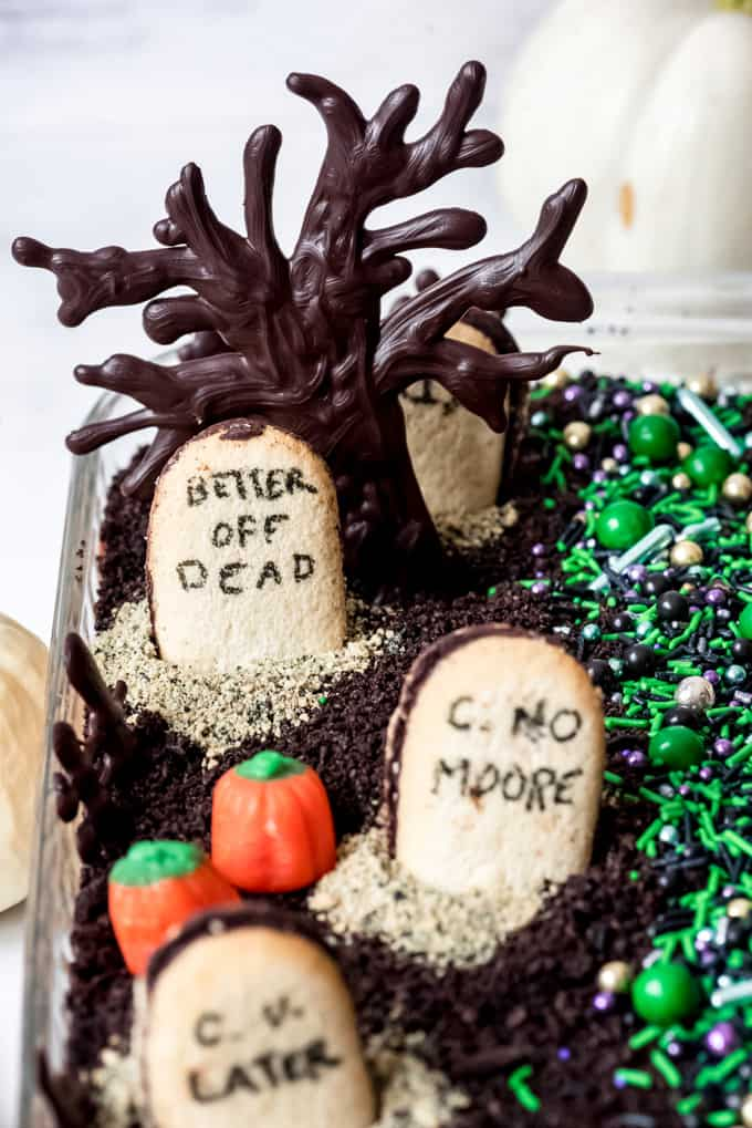 A decorated chocolate Halloween pudding dessert.