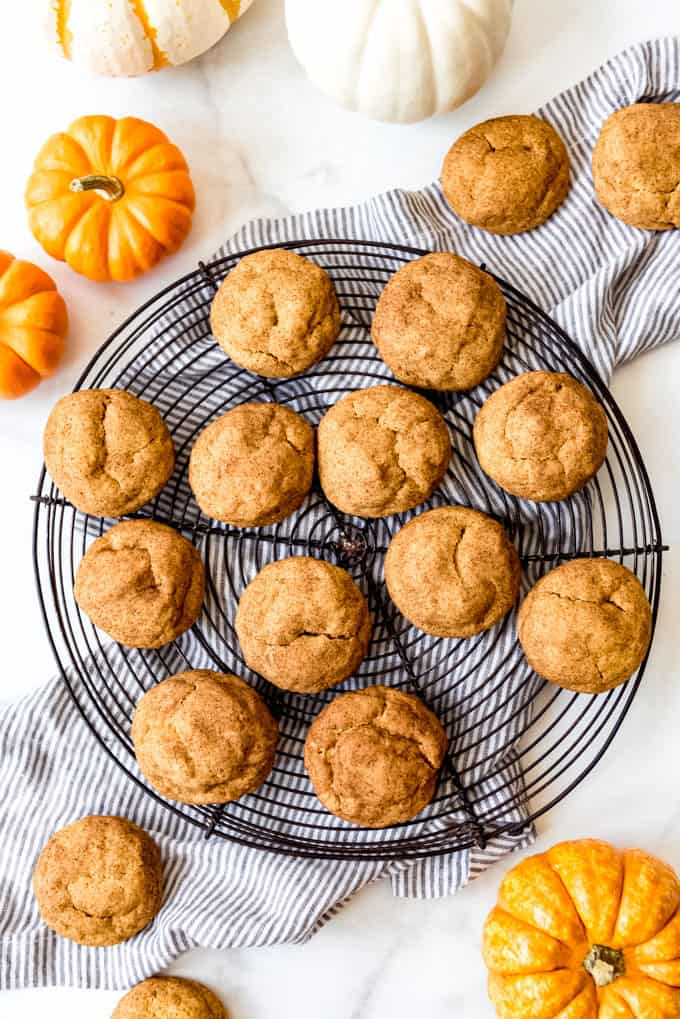 Puffy, crackled tops of pumpkin snickerdoodle cookies.