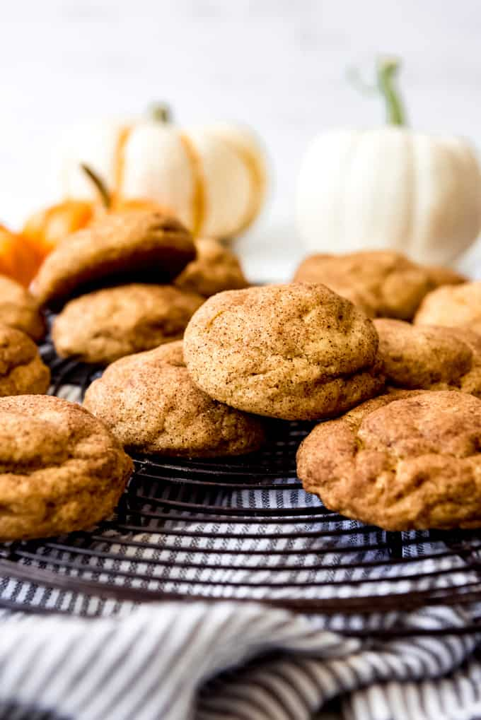 Cinnamon-sugar coated snickerdoodle cookies.