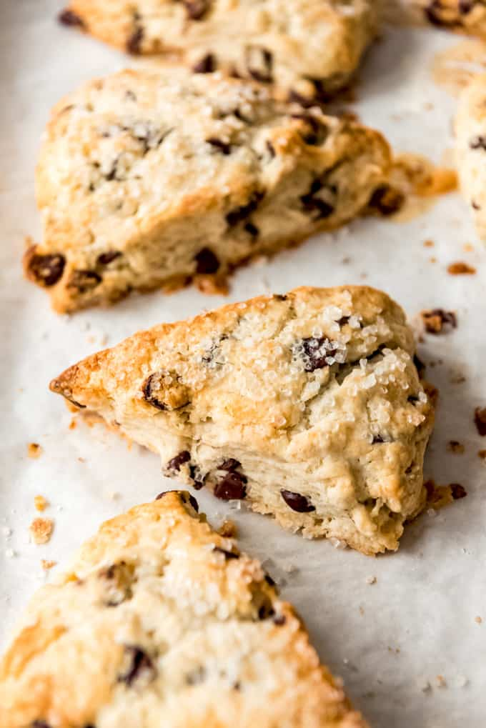 close up of Chocolate Chip Scones