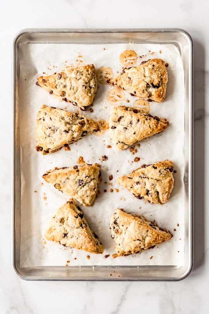 freshly baked Chocolate Chip Scones on baking tray