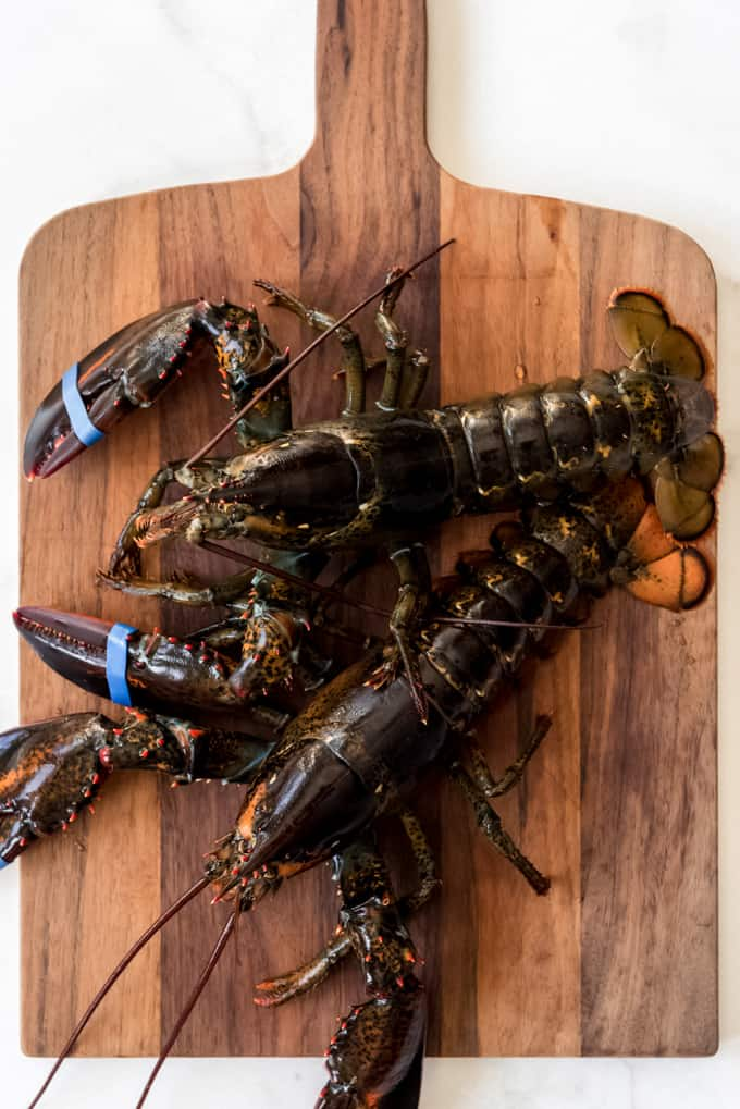 Two live lobsters on a wooden cutting board.