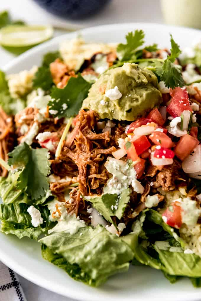 a salad topped with shredded sweet pork, pico de gallo, guacamole, beans, rice, and cheese