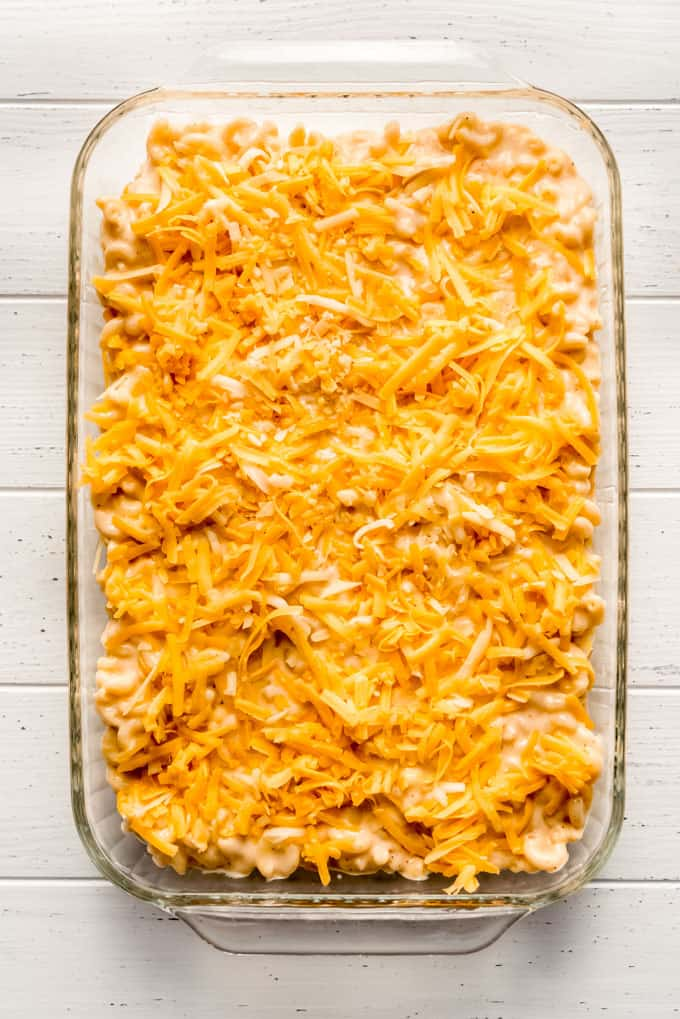 cheese sprinkled over creamy macaroni and cheese