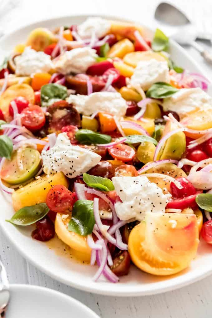 a tomato salad with burrata cheese served family style on a white plate