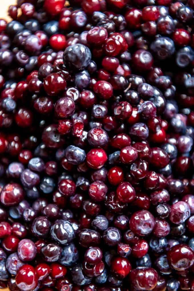 a close image of wild Montana huckleberries
